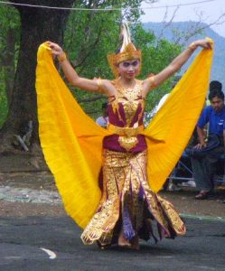 Performances of dance and music were held by the local students on the Friends of Menjangan Festival, held at the Bali Barat National Park.