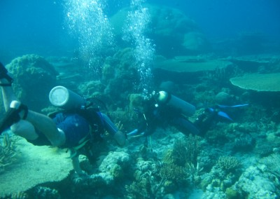 Anambas Coral Reef Conservation Program, Durai Island