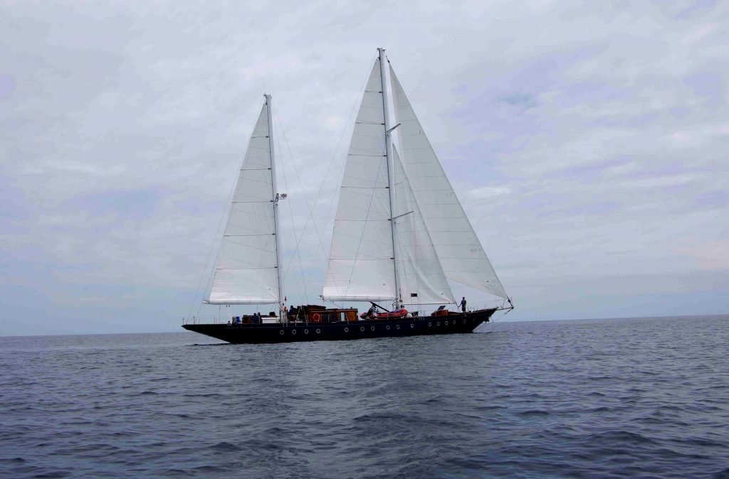 sailing vessel mir biosphere foundation